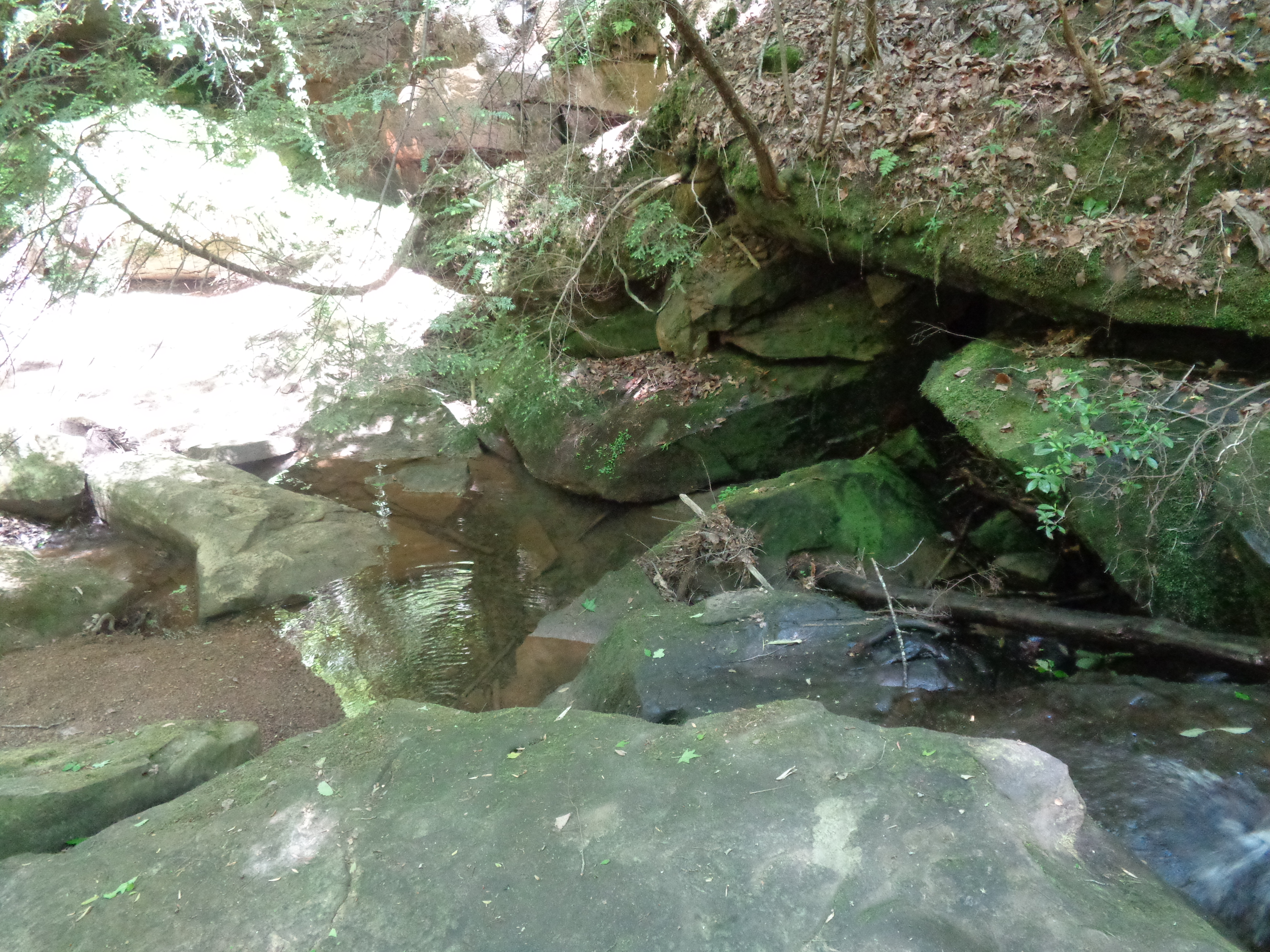 New Hope Natural Water Spring