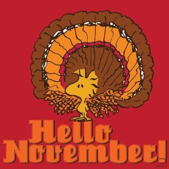 b75448d1fd52d7bcdd1c30d6c51ce3bc--hello-november-quirky-quotes.jpg