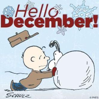 03c8a96a7b0efb8c2372e0aa9e9fd29f--hello-december-happy-december